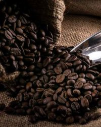 escovina-coffee-luwak-01_1