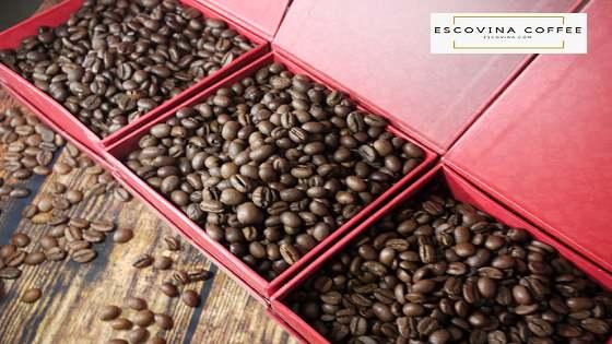 cafe-robusta-0765669678-1_5