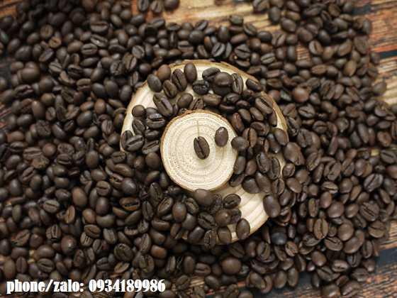 cafe-nguyen-chat-robusta-0934189986-1_2