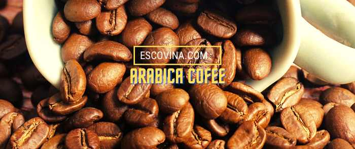 arabica-coffee-escovina-0765669678-060121-1_100