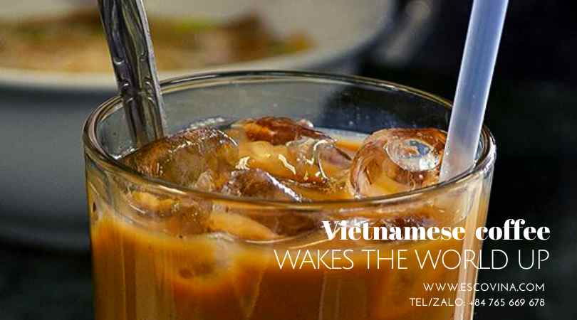 vietnamese-coffee-wakes-the-world-up-0765669678-29-320-02